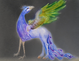 Peacock Hippogriff by Loliigo