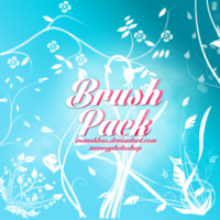 Brush Pack by IremAkbas
