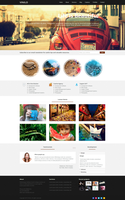 Vinilo - Responsive Wordpress Theme by DarkStaLkeRR