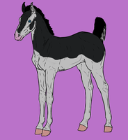Foal Design CLX by ZombieOverLoad