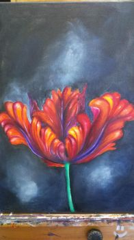 Tulip Painting by Friesians9230