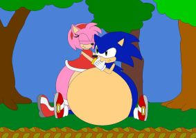 Sonic And Amy Big Fat Lovers by Kphoria