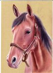 Horse by Jan20000