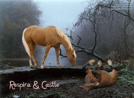 RESPIRA and CASTLE. One. by MiddysGraphics