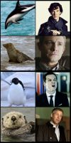 BBC Sherlock: Sea Edition by OrminLange