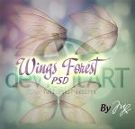 Wings Forest PSD by Maryneim