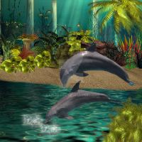 the dolphins home by kayleegirl