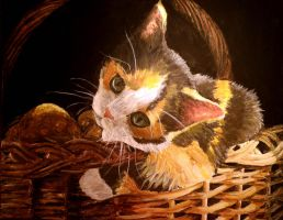 Basket Kitty by Meorow