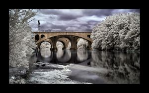 ...Infrared... by canismaioris