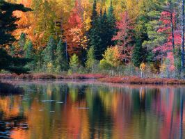 Fall at the Lake by EmeraldDust