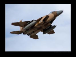Flanker F-15 by jdmimages