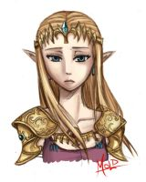 Zelda Practice Sketch by MOLD123