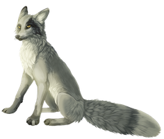 Marble Fox by cottondragon
