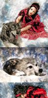 Wolf's Snow Collection by ZhaoT