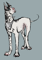 The Great Dane2 by mysteriousharu