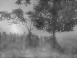 Mysterious Landscape BG 01 by mimustock