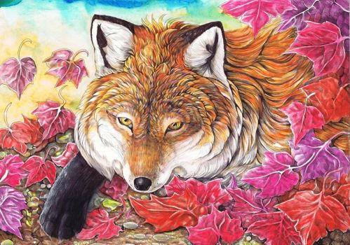 Fox in the Autumn Leaves by dawndelver