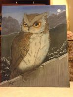 Owl Canvas by HugMonster341