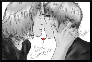 APH - Love the love! by Silbido