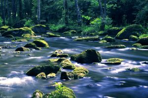 Childhood River by PhilippeGaravel