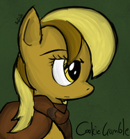 Cookie Crumble by RayFriedh