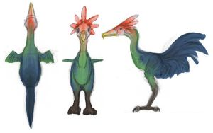 Giant Bird Colors by Zalcoti