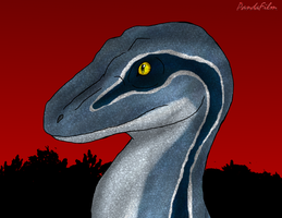 Velociraptor: Blue of the Raptor Squad by PandaFilms