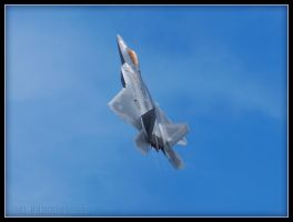 The USAF F-22 Raptor 3 by Dracoart