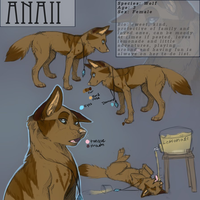 Anaii Reference 2013 (READ DESCRIPTION) by DarkWolfArtist