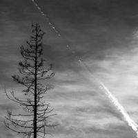 Contrails by Zemni