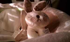 Bunny by withinmeloveresides1