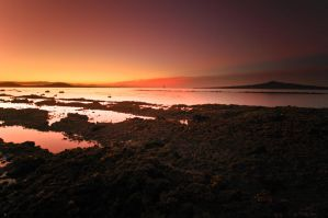 Rangitoto 1 by MisterDedication