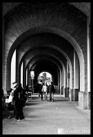 Arched by CharliePhotos
