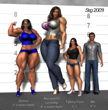 Height Comparison by GRISSSE