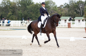 Dressage Cup_54 by CalyHoney
