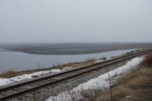 Railroad Tracks by the Ocean 2 by prints-of-stock
