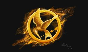 Hunger Games - Mockingjay Pin by emesemese