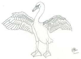 One magnificant swan (unshaded) by Dogezon