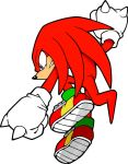 Knuckles Color Training by HardVector