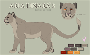 Aru`s reference sheet by LowerSun