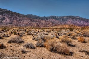 Plateau by IvanAndreevich