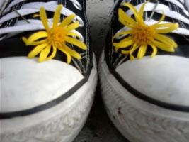 Chucks and Daisies, Original by my-bloody-death