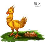 001. Introduction - Chocobo by AoiAiron