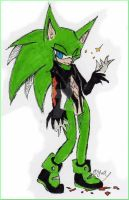 : Scourge the Hedgehog : by YamiYumi