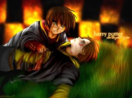 always the first - HP4 spoiler by angiechow