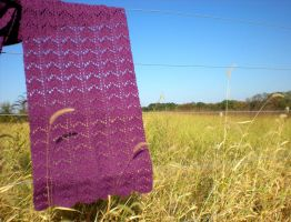 Once Upon a Dream Shawl by TheSuzieBlue
