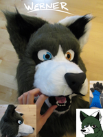 My second fursuit (Werner) by ThePronssinuoli