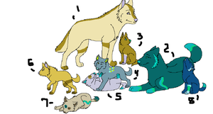 Wolf Family Point Adopts by AvalaAdopts