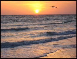 Sun Sets on the Waves by hosmer23
