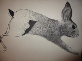 Abstract Rabbit by kate-everyday